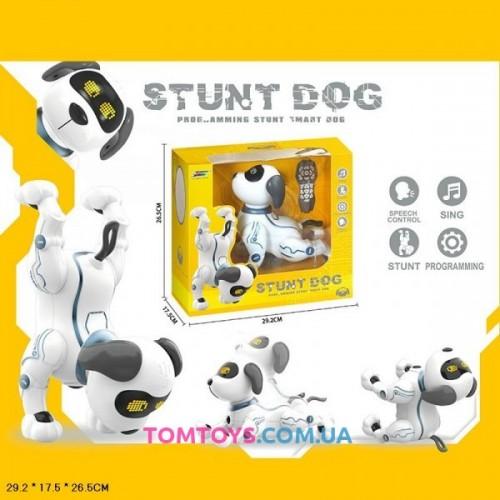 Робот собака на радиоуправлении Stunt  Dog  K16